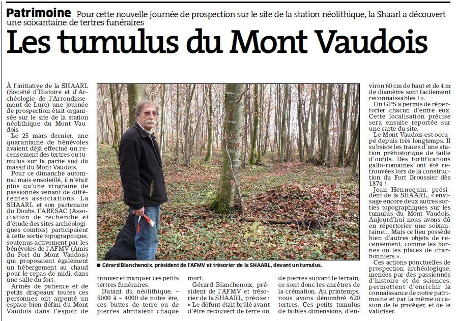 Tumulus du Mont Vaudois