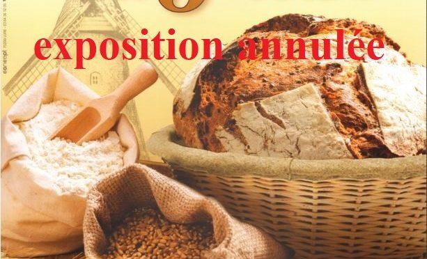 Du grain au pain
